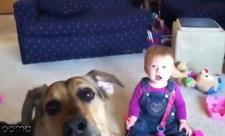 خنده های بانمک نینی در کنار سگ خانگی