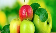 میوه ای که میزان کاهش وزن را در افراد 2