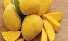 این میوه قاتل سرطان است