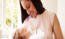 افزایش شیر مادر با این دوگیاه