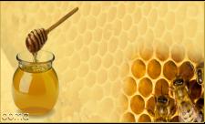 آیا عسل را همراه موم مصرف کنیم؟