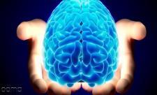 دارویی برای تقویت حافظه