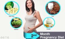 تغذیه در ماه دوم بارداری