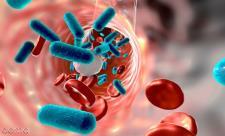 علائم عفونت در بدن را بشناسید