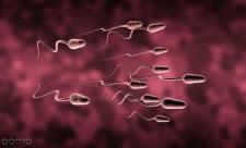 علت کم تحرکی اسپرم، درمان آن و احتمال بارداری