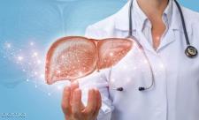علائم کبد چرب در زنان، کودکان و پوست