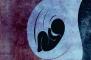 3 علت اصلی سکسکه جنین در رحم