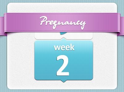 هفته دوم بارداری اوما