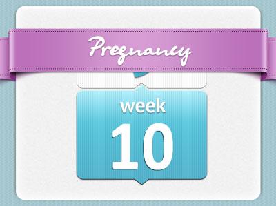 هفته دهم بارداری، هفته ده بارداری