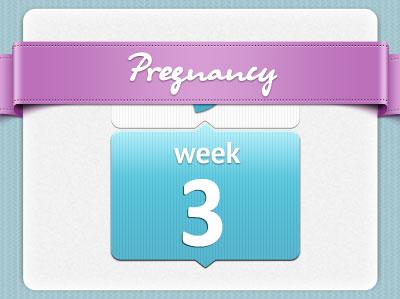 هفته سوم بارداری، هفته 3 بارداری