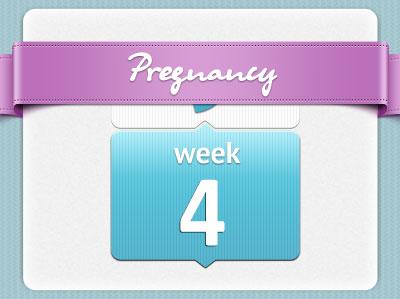 هفته 4 بارداری، هفته چهارم بارداری