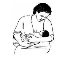 وضعیت شیر دادن