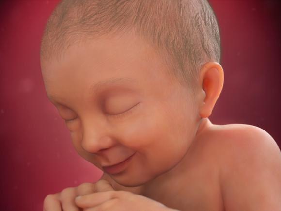 بارداری هفته به هفته - هفته سی و هفتم بارداری