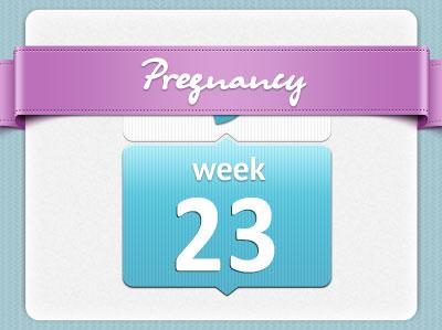 هفته بیست و سوم بارداری، هفته 23 بارداری