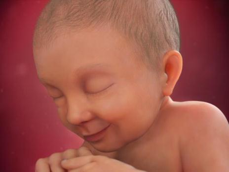 عکس جنین در هفته 37 بارداری