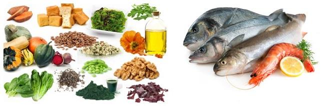 منابع غذایی امگا3