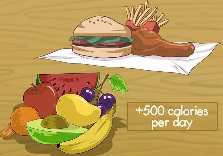 500 کالری بیشتر از قبل