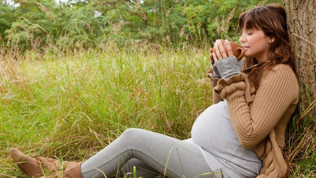 مصرف چاي هاي گياهي در بارداري