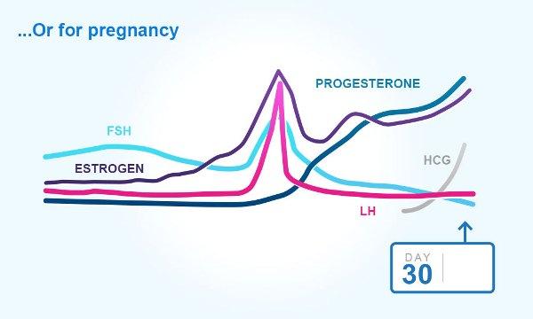 سطح هورمون تخمک بارور شده