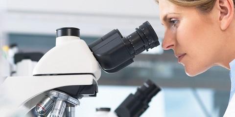 آزمایش خون و بررسی بافت خون برای واکنش مترونیدازول