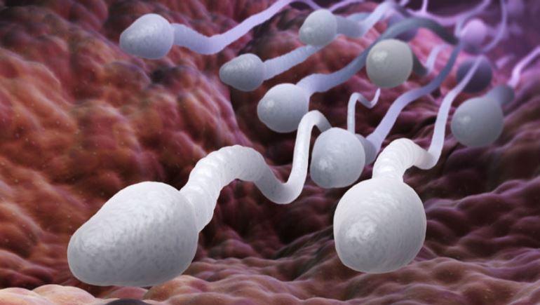 نتیجه منفی آزمایش اسپرم