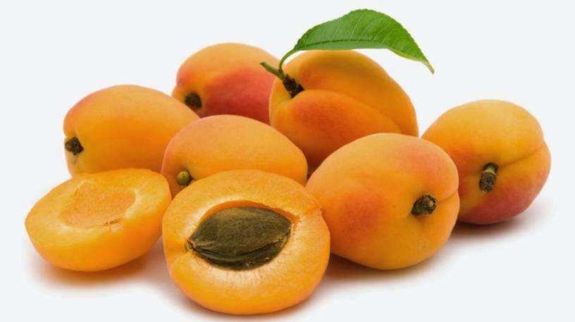 ارزش غذایی زردآلو