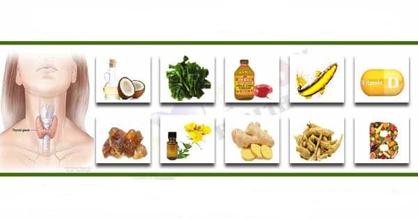 درمان گیاهی کم کاری تیروئید