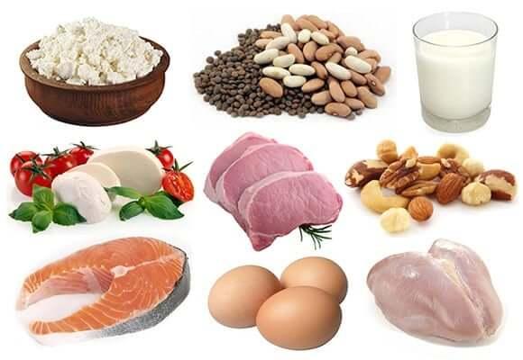 رژیم غذایی پروتئین لاغری