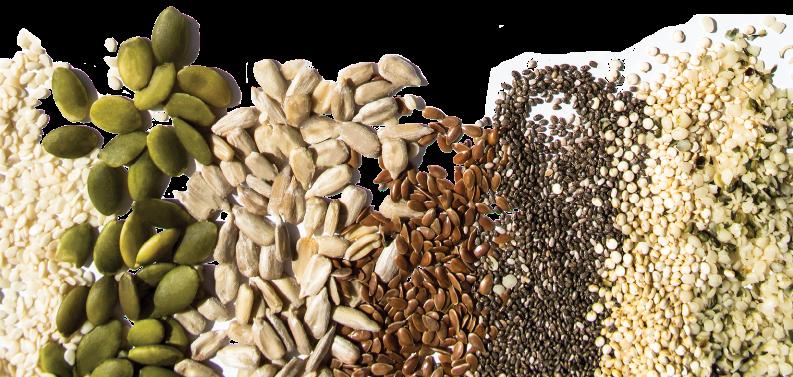 حبوبات و منبع منیزیم