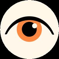 آغاز تشکیل شبکیه چشم جنین