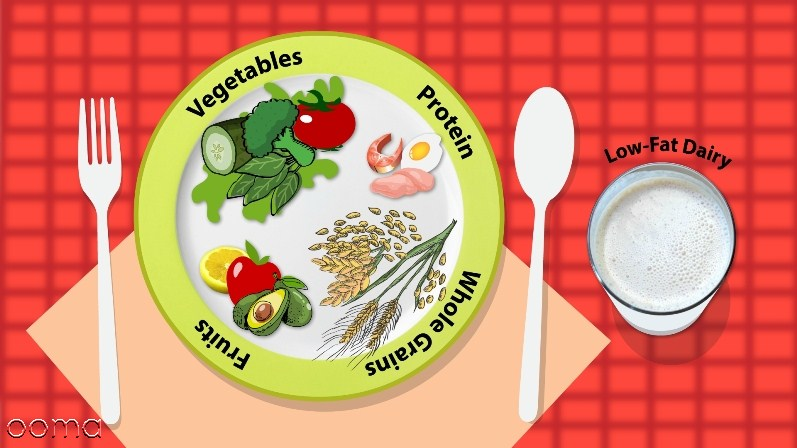رژیم غذایی دش