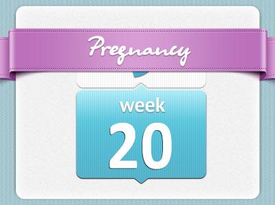 هفته بیستم بارداری