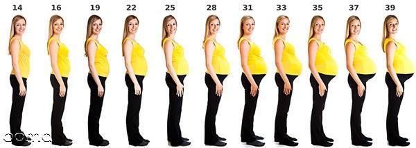 بزرگ و حساس شدن سینه  زنان در دوران بارداری از همان ماه اول