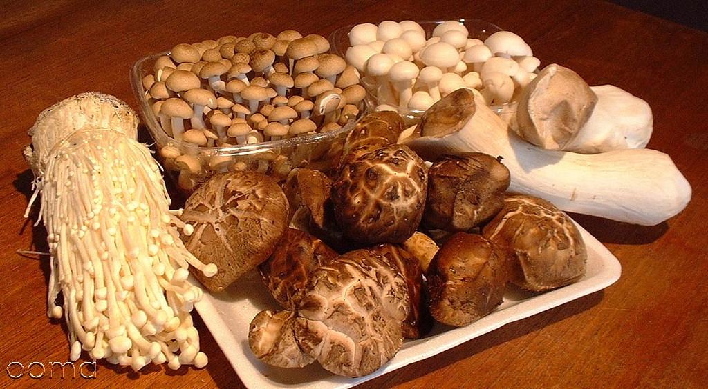 خوردن قارچ در دوران بارداری