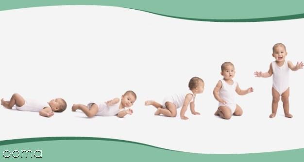 نوزاد   نوزاد ماه به ماه  رشد نوزاد