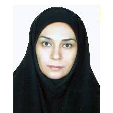 دکتر مریم نورزاده